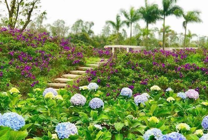 vườn hoa lớn nhất công viên