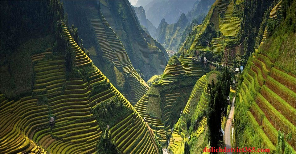 Thung Lũng Ruộng Bậc Thang
