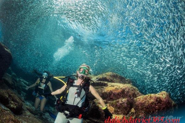 ngắm Đảo san hô thái lan