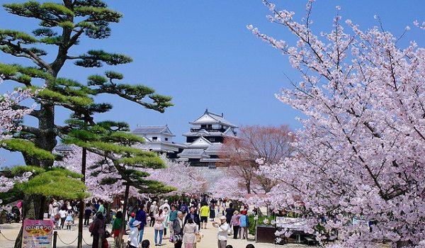 những ngành du học Nhật Bản