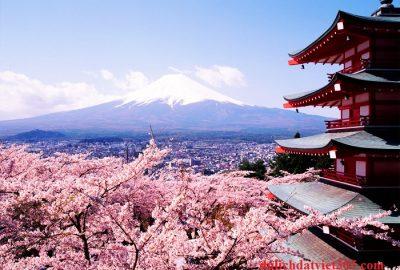 Nhật Bản mùa hoa anh đào