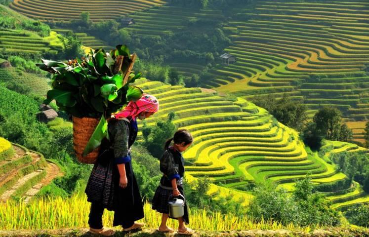 Tour Du lịch Mộc Châu - sơn La- Điện Biên