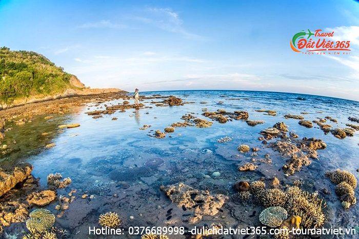 giá vé du lịch Côn đảo 2021